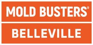 Mold Busters Belleville