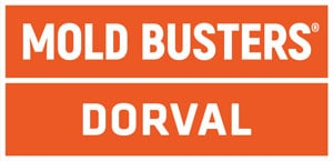 Mold Busters Dorval