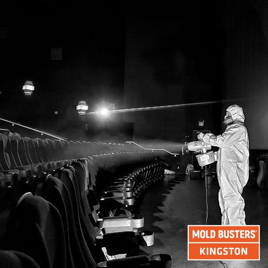 Élimination des moisissures dans les salles de cinéma - Kingston