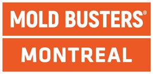 Mold Busters Montreal