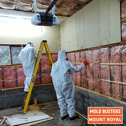 Enlèvement de moisissures de garage - Mont Royal
