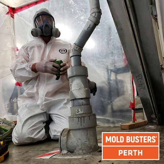 Nettoyage de moule commercial - Perth