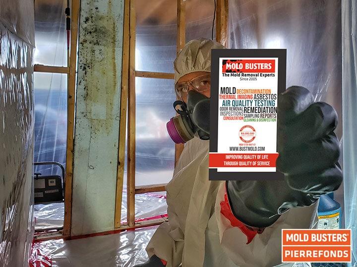 Elimination de la moisissure dans l'Ouest de l'Île de Montréal