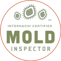 Montreal Mold Removal and Testing - Certified and Fast