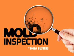 Mold Busters opens a new chapter in mold testing with Mobile Spectroscopic Instruments