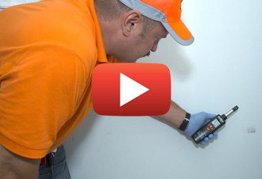 Mold Inspections and Removal in Manotick