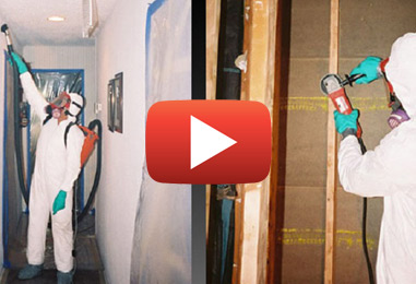 Mold Inspections and Removal in Pembroke