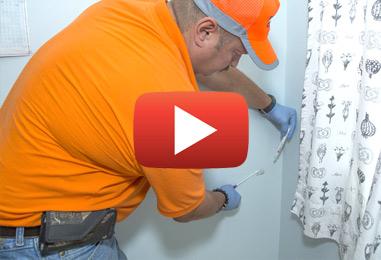 Services professionnels pour détecter la moisissure noire