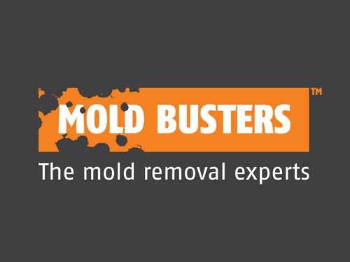 New! Mold Busters Online Branding