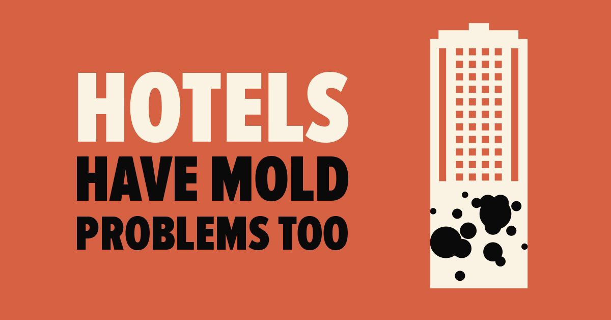 Hotels Have Mold Problems Too