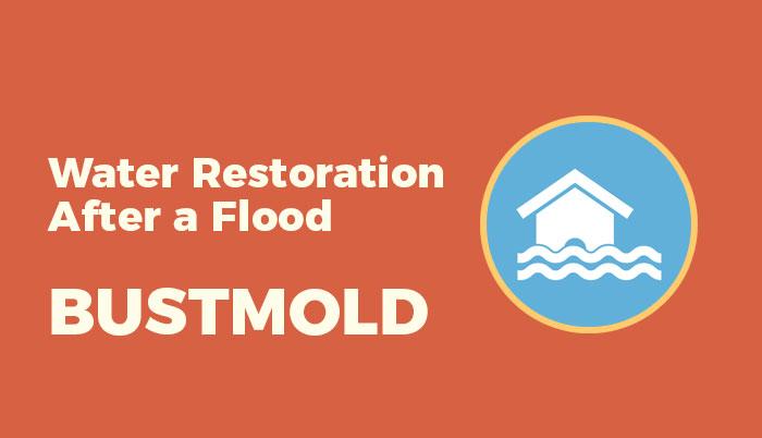 Water Restoration After a Flood