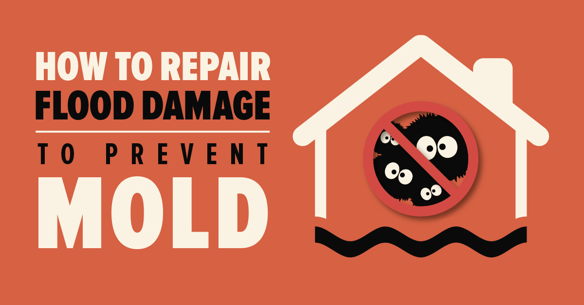 Repair Flood Damage to Prevent Mold