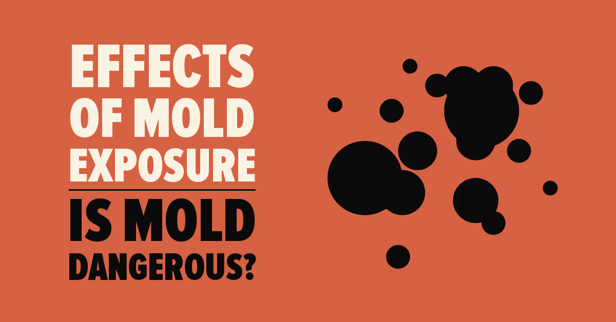 Effects of Mold Exposure: Is Mold Dangerous?
