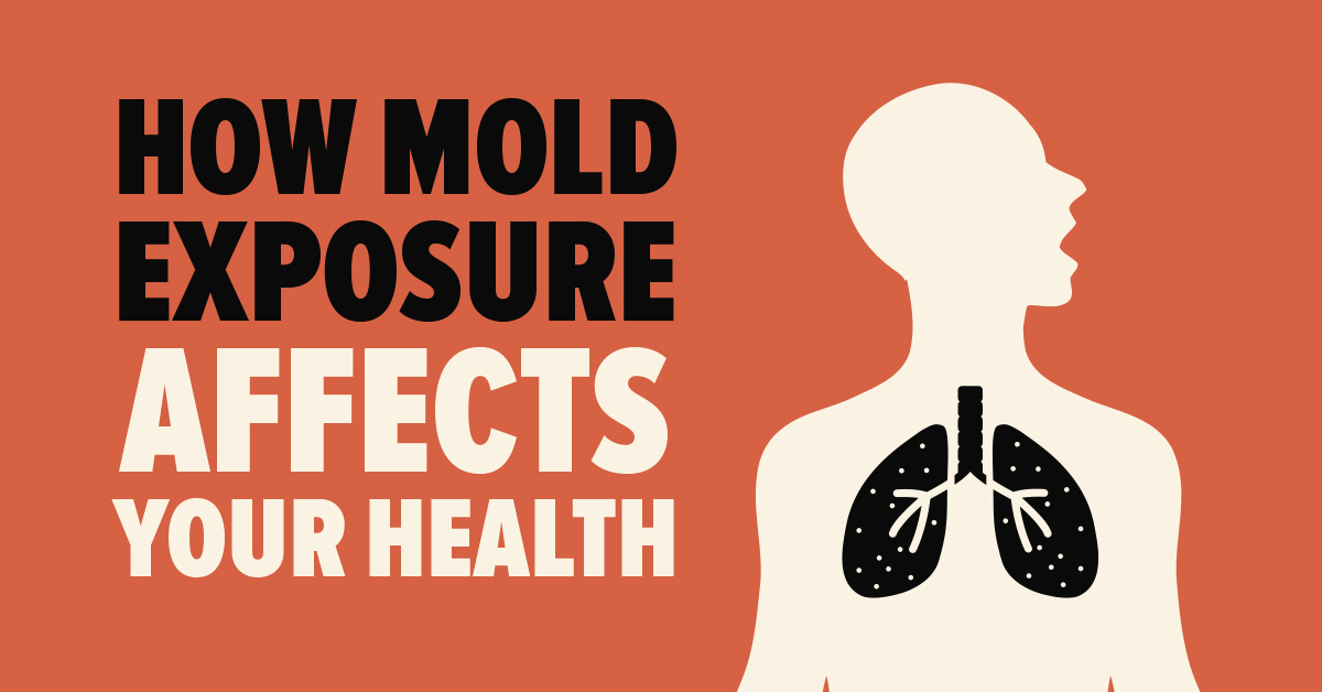 How Mold Exposure Affects Your Health