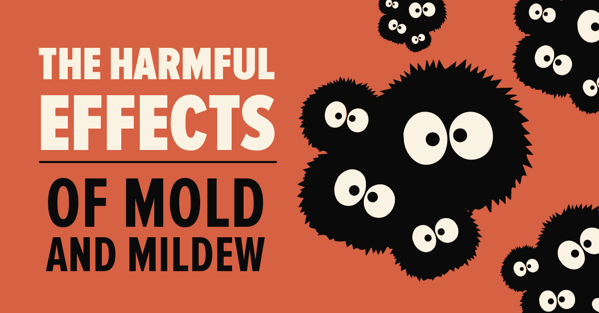 The Harmful Effects of Mold and Mildew