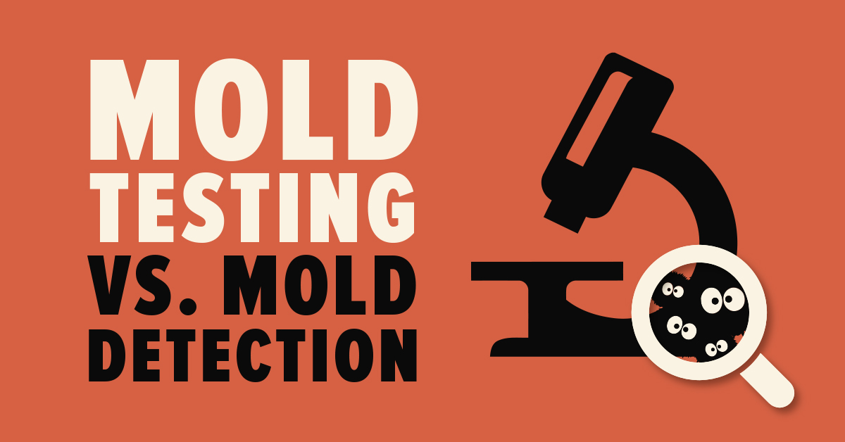 Mold testing vs Mold detection