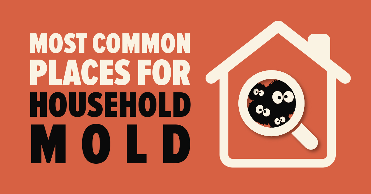 Most Common Places for Household Mold