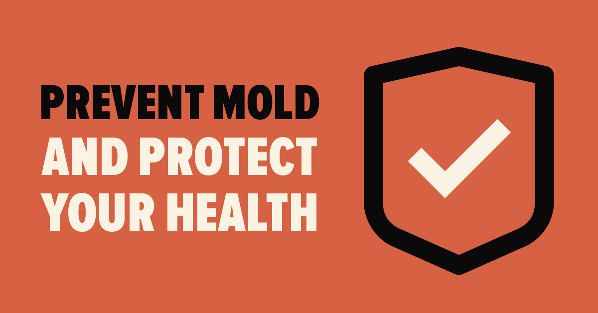 Prevent Mold and Protect Your Health