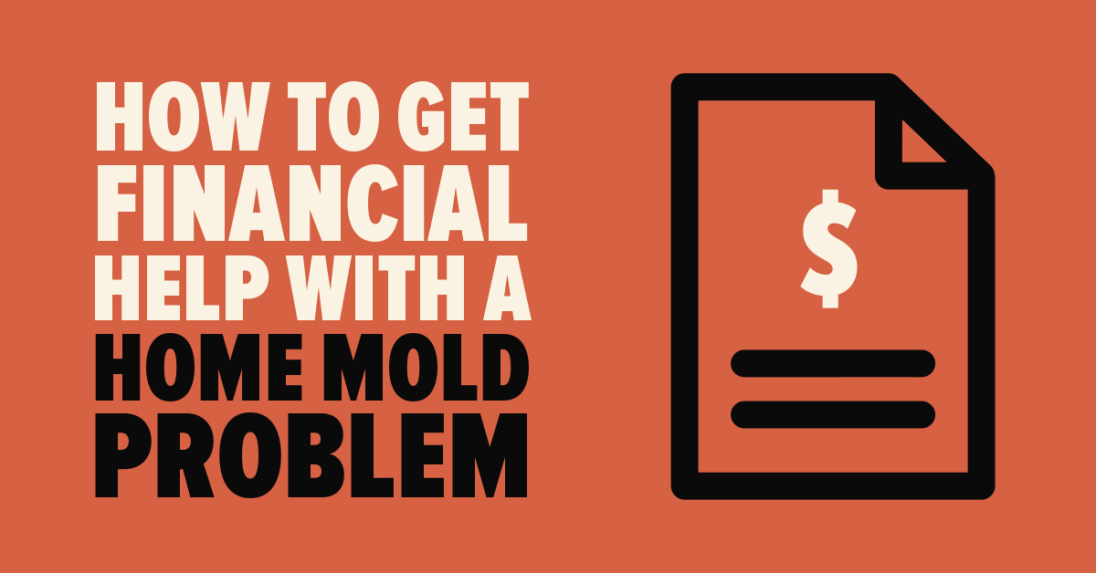 How to Get Financial Help With a Home Mold Problem