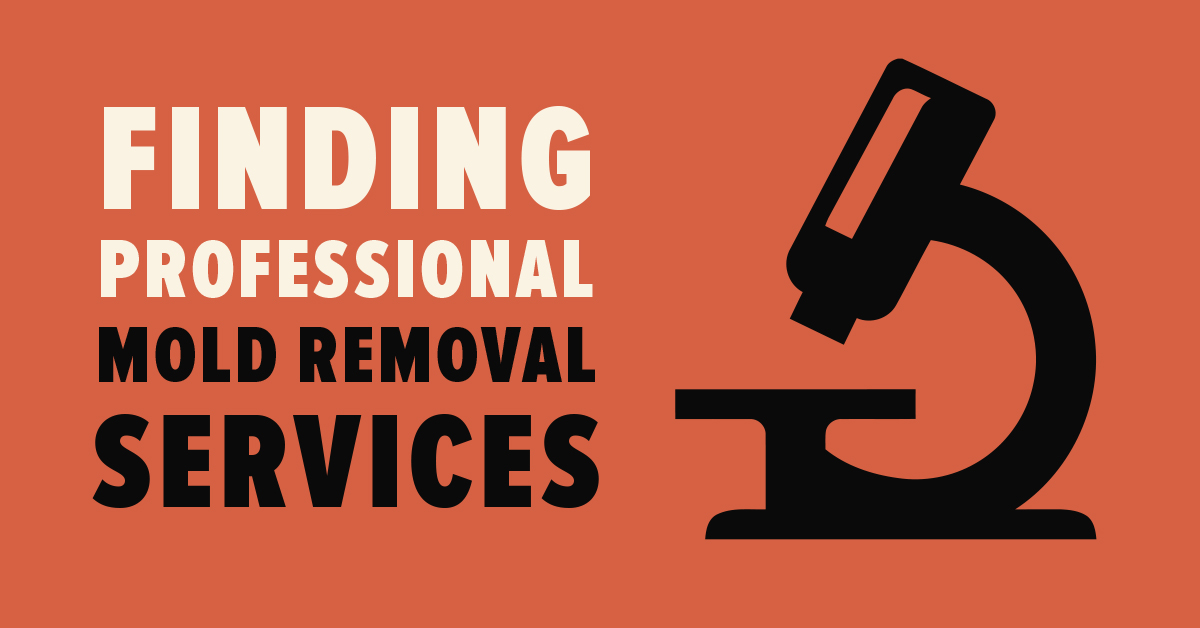 Finding Professional Mold Removal Services