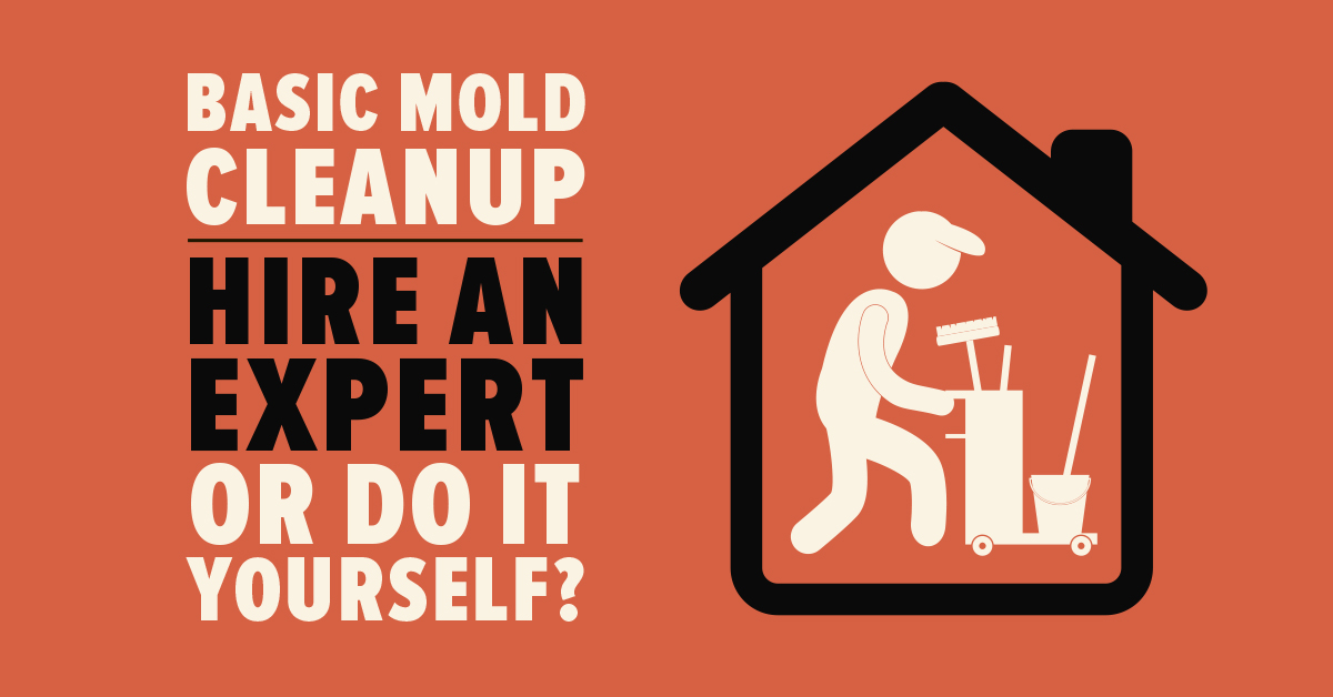 Basic Mold Cleanup: Hire An Expert Or Do It Yourself?