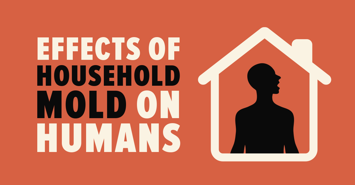 Effects of Household Mold on Humans