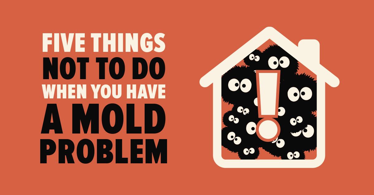 Five Things NOT to Do When You Have a Mold Problem