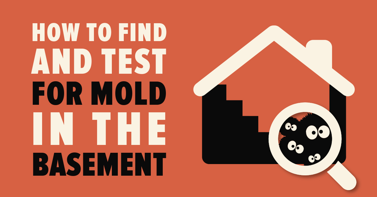 How To Find And Test For Mold In The Basement