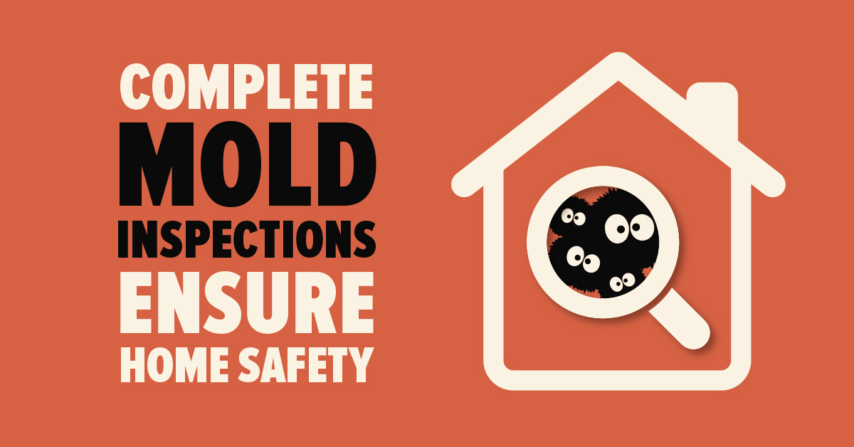 Complete Mold Inspections Ensure Home Safety