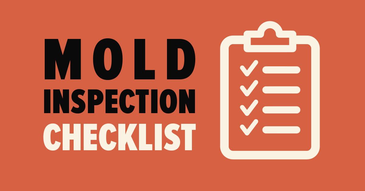 mold inspection checklist