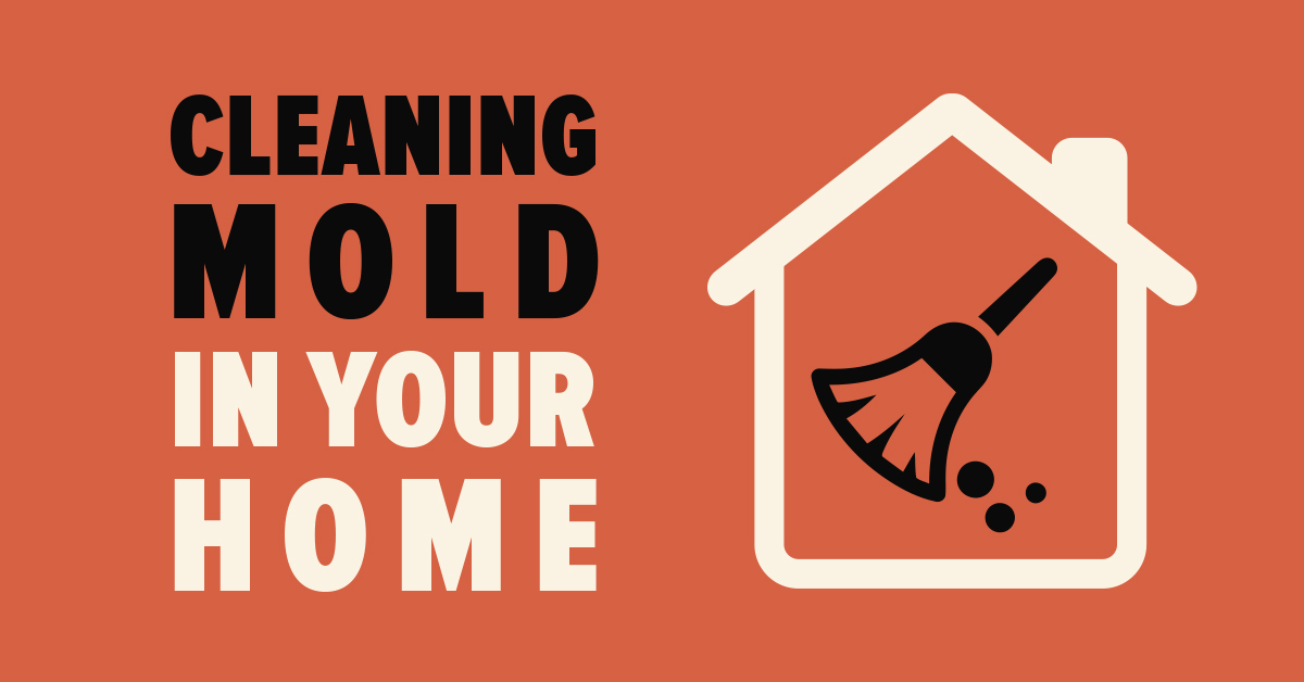 Cleaning Mold in Your Home