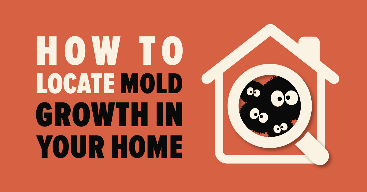 How To Locate Mold Growth in Your Home
