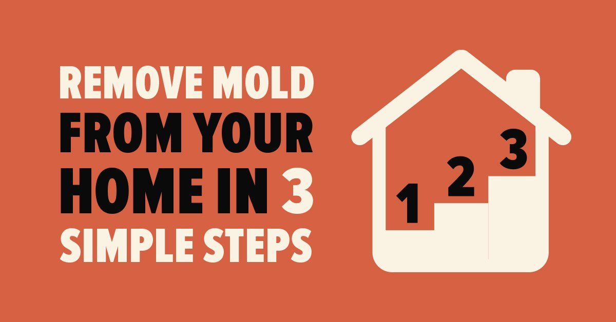 Remove Mold from Your Home in 3 Simple Steps