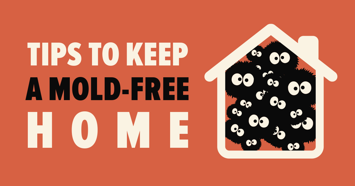 Tips to Keep a Mold-Free Home