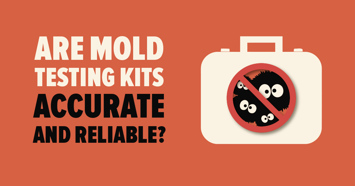 Are Mold Testing Kits Accurate and Reliable?