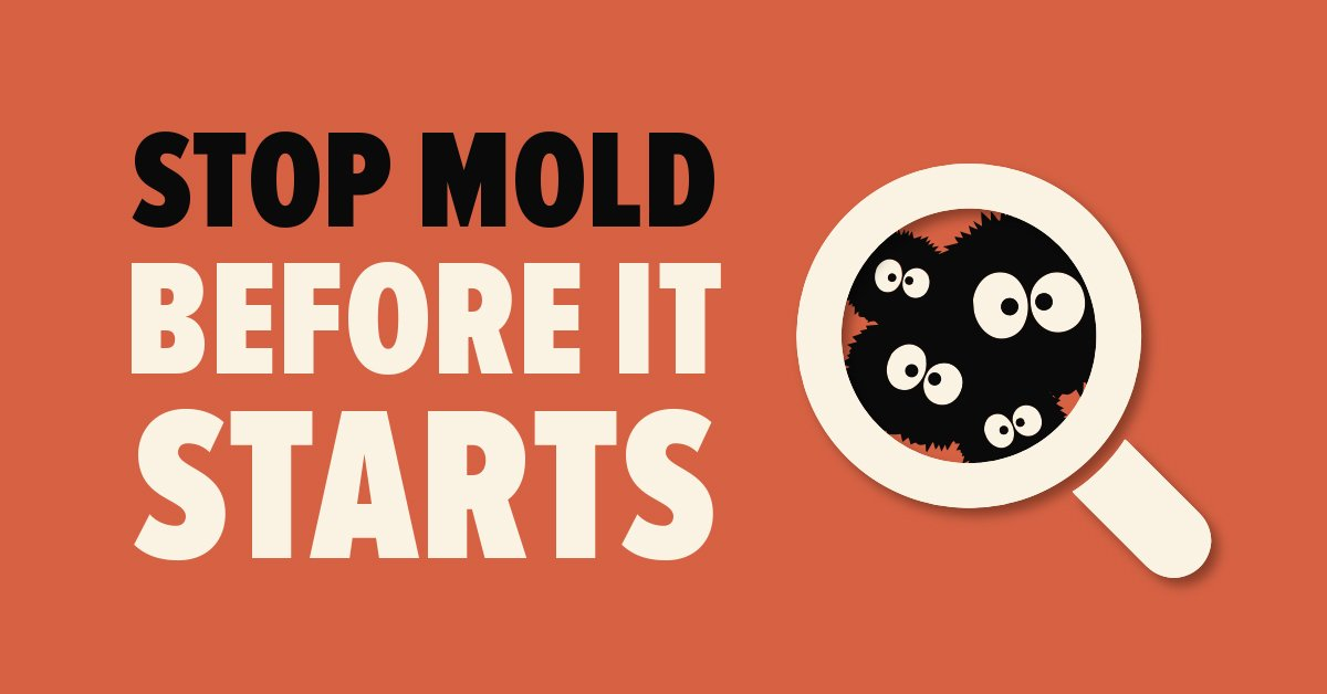 Stop Mold Before It Starts