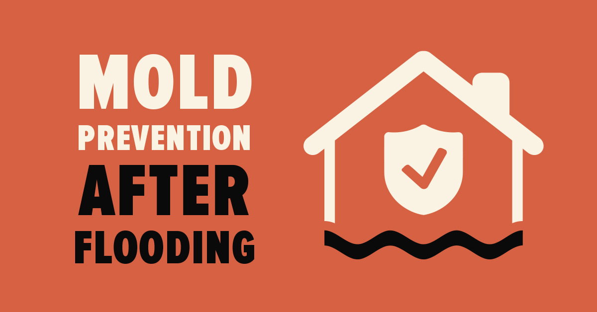 Mold Prevention after Flooding
