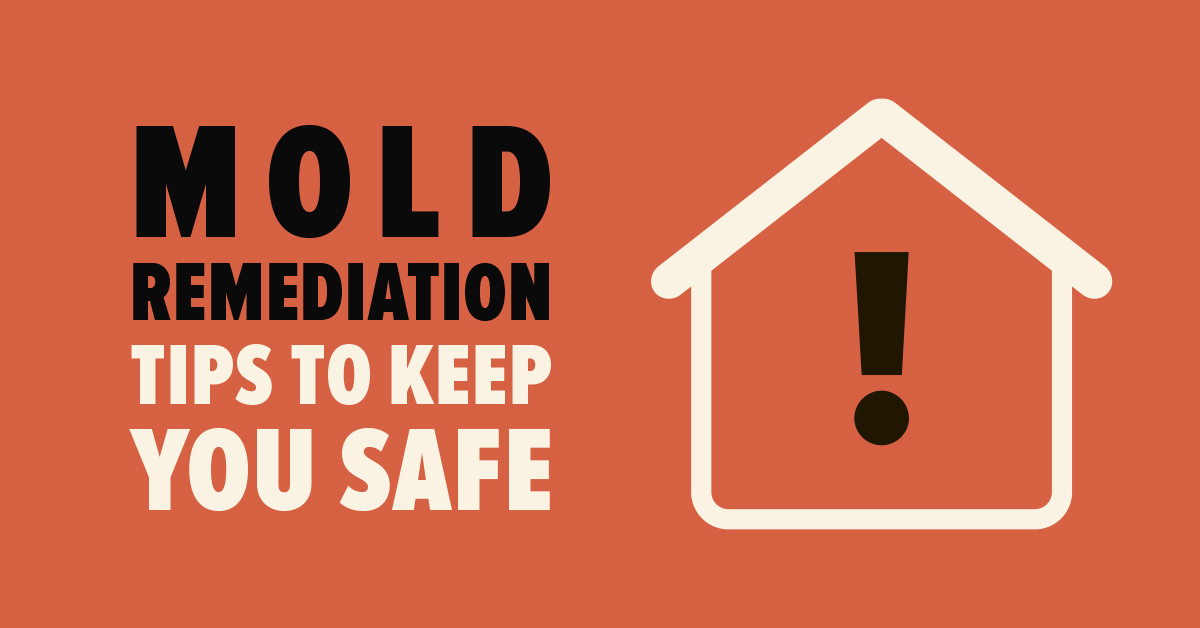 Mold Remediation Tips to Keep You Safe