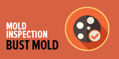 Mold Inspection and Detection Services   Mold Busters