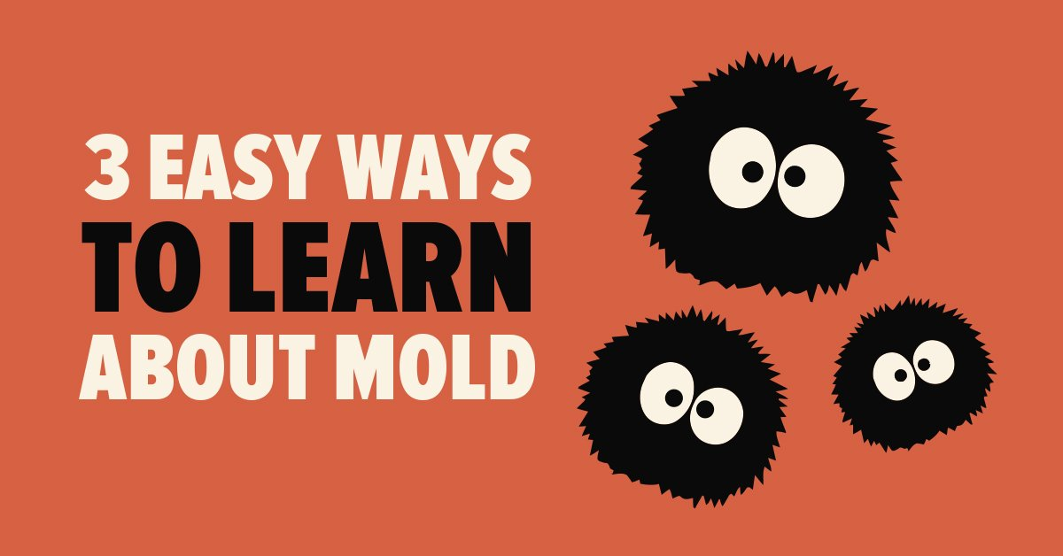 3 Easy Ways to Learn about Mold