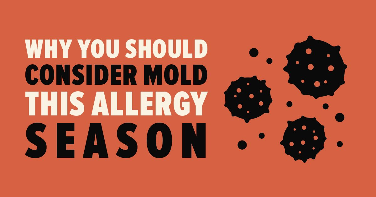 Mold and Allergy