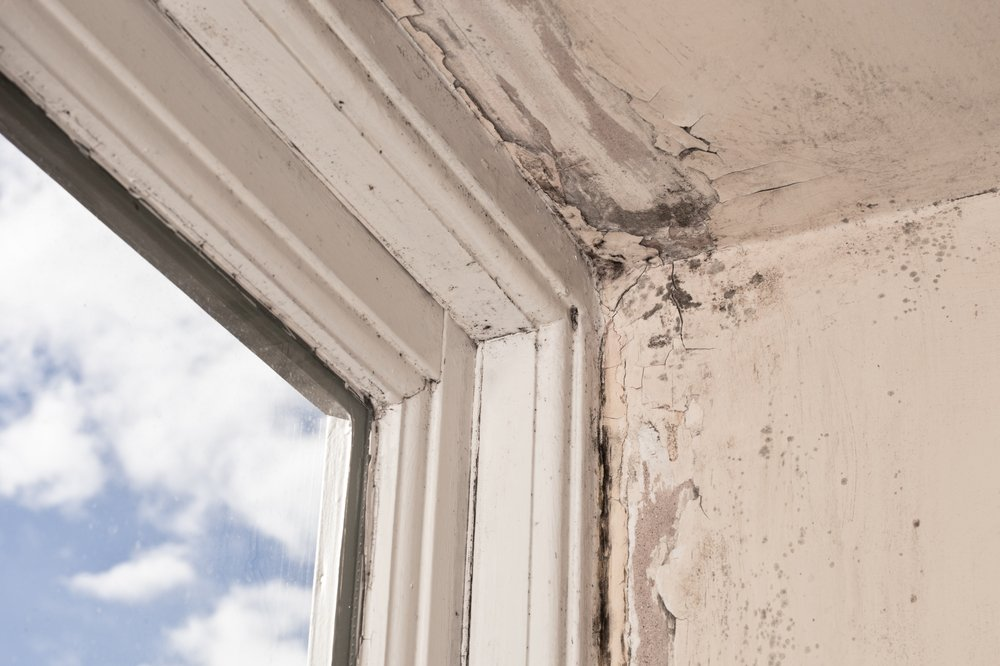 Air Conditioners and Mold - Rotting Window Frames