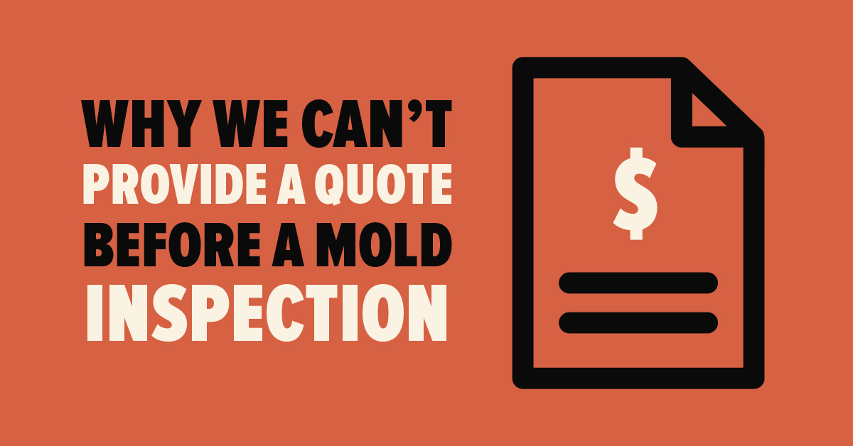 Why We Can't Provide a Quote Before a Mold Inspection
