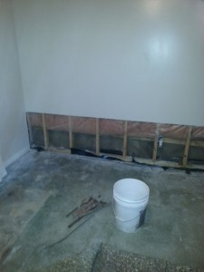 Mold Remediation and Water Damage Restoration