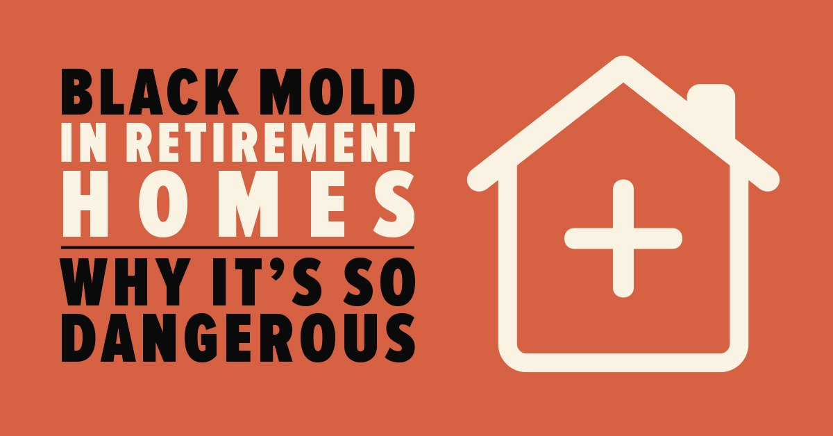 Black Mold in Retirement Homes: Why it's so Dangerous
