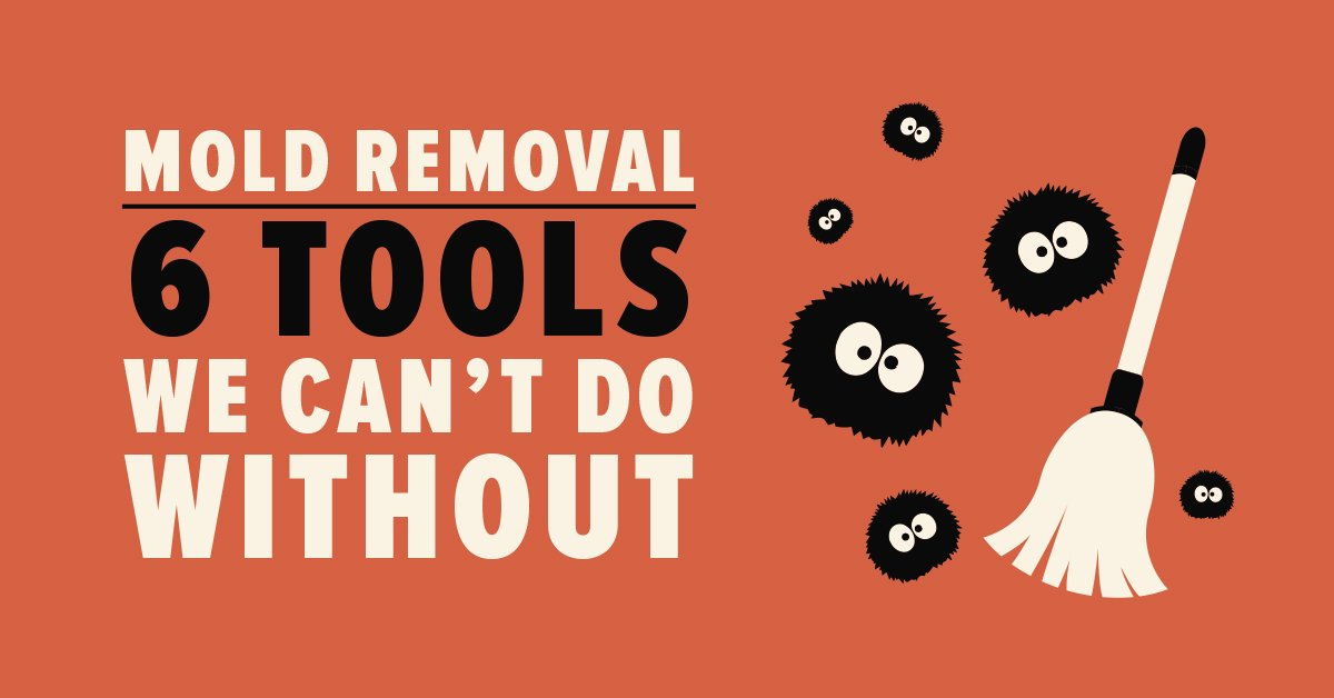 Mold Removal: 6 Tools We Can't Do Without