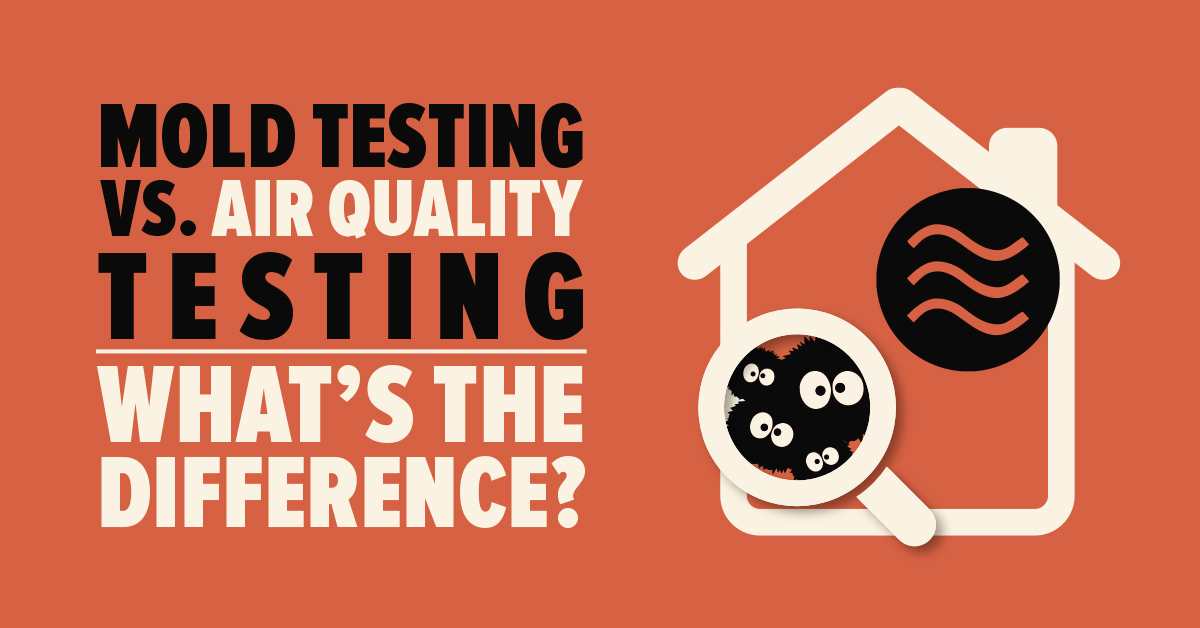 mold testing vs air quality testing