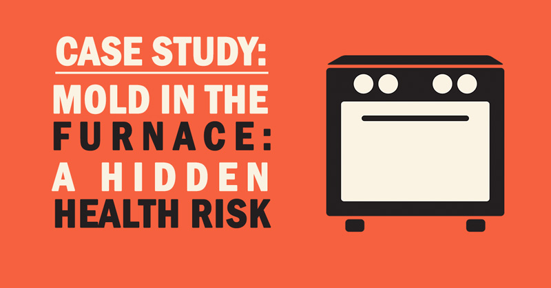 Mold in the Furnace: A Hidden Health Risk