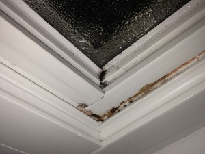 Leaky Windows Cause Moisture Intrusion and Mold