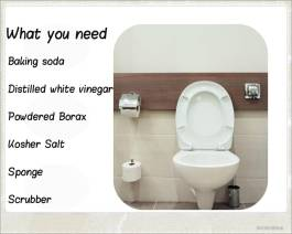 Natural Ways to Clean Your Toilet - Mold Busters